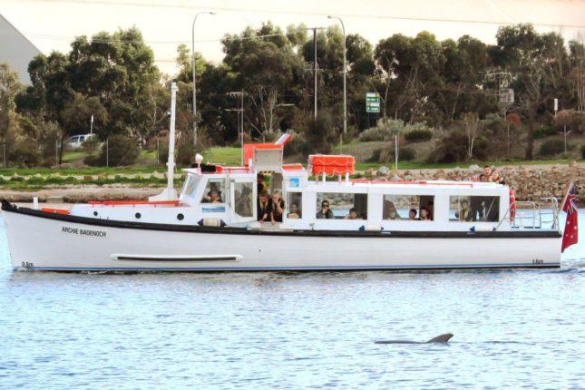 Archie Badenoch Port River Cruise